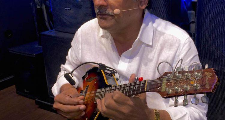 Acoustic Guitar, 12 String Guitar, Mandolin & Banjo Sounds